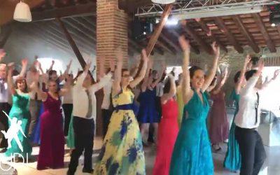 Un flashmob divertidisimo en la boda de Júlia y Dani